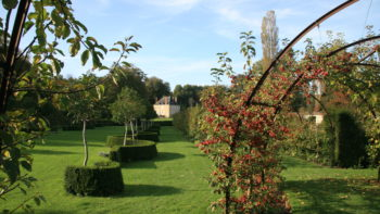 Permalien vers:Le Jardin